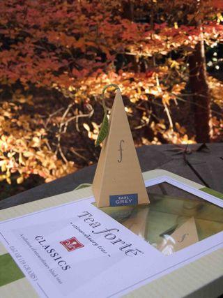 三角錐ティーパック1.jpg