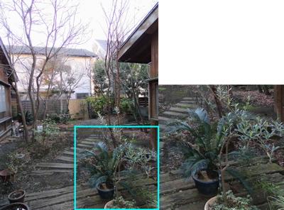 我が庭00-21.jpg