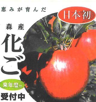 抗酸化リンゴ1.jpg