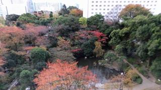 紅葉庭園1.jpg