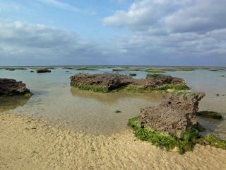 シンリ浜10.jpg