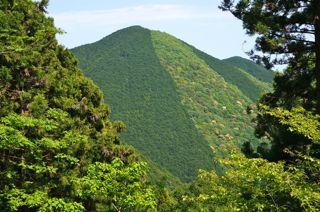 高山風景.jpg