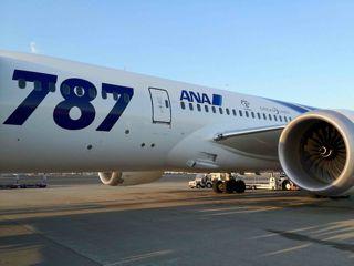 787胴体1.jpg