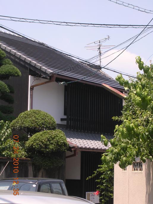 DSCN8619.JPG