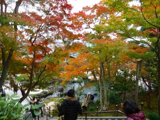 長谷寺の紅葉.jpg