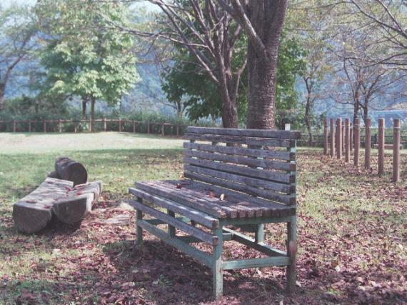 20130725-公園のベンチ.jpg